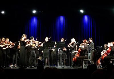 Chamber Strings